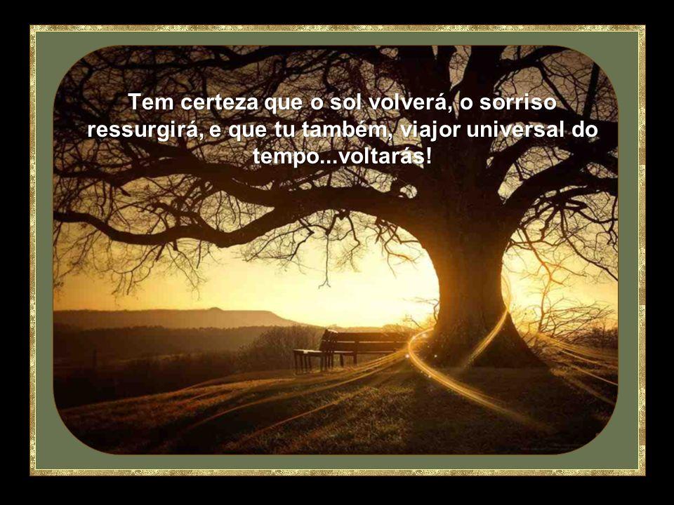 Tem certeza que o sol volverá, o sorriso ressurgirá, e que tu também, viajor universal do tempo...voltarás!