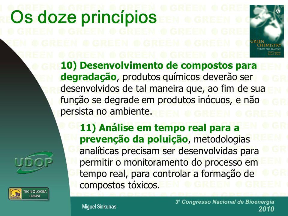 Os doze princípios