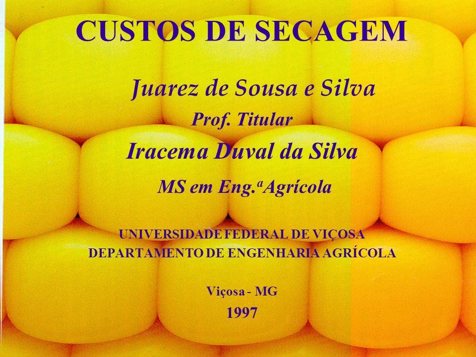 UNIVERSIDADE FEDERAL DE VIÇOSA DEPARTAMENTO DE ENGENHARIA AGRÍCOLA
