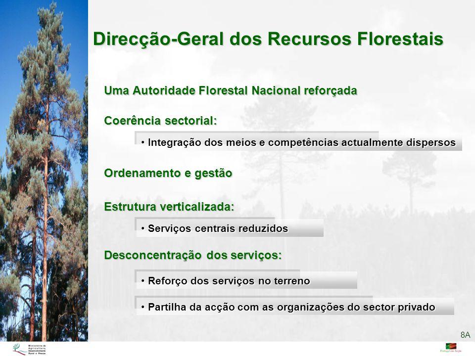 Direcção-Geral dos Recursos Florestais
