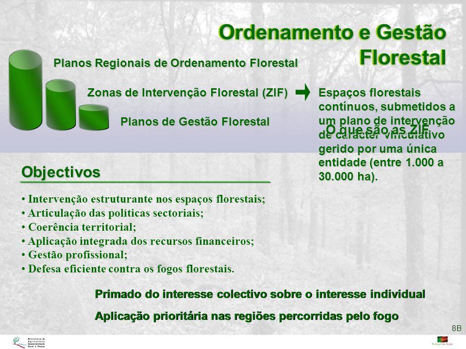 Ordenamento e Gestão Florestal