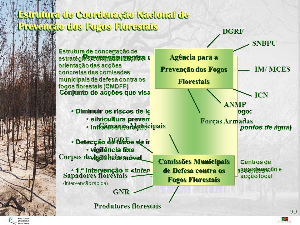 Estrutura de Coordenação Nacional de Prevenção dos Fogos Florestais