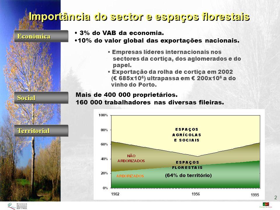 Importância do sector e espaços florestais