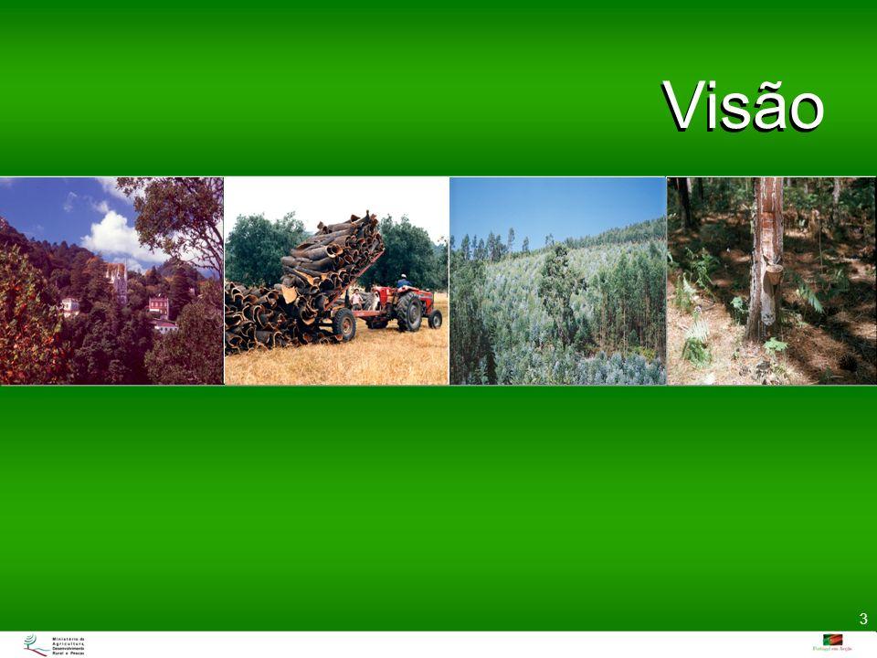 Visão Uma floresta para o futuro que seja economicamente viável, ecologicamente responsável e proporcione qualidade de vida às populações.