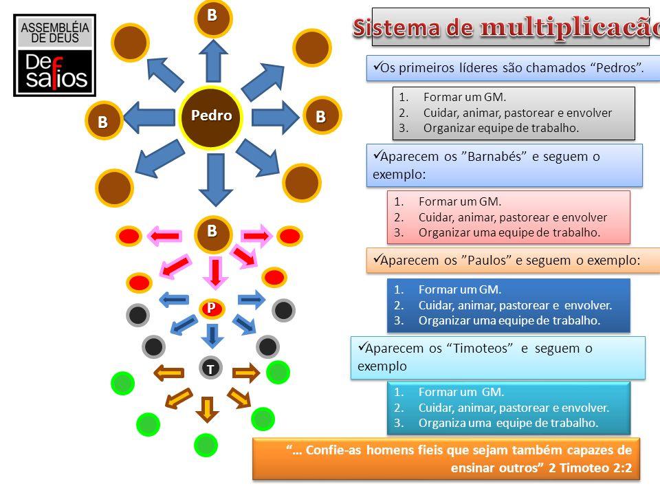 Sistema de multiplicacão