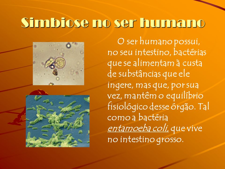 Simbiose no ser humano