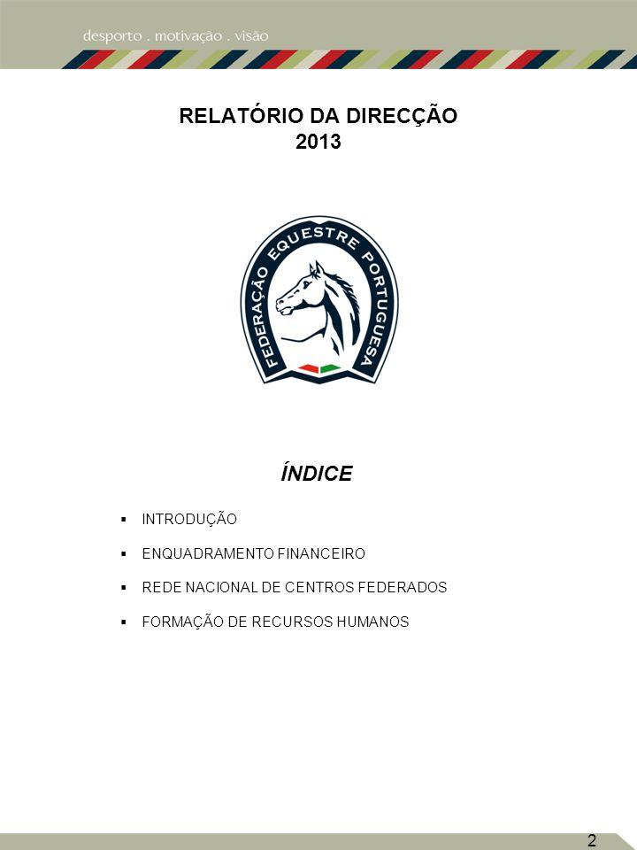 INDICE RELATÓRIO DA DIRECÇÃO 2013 ÍNDICE INTRODUÇÃO