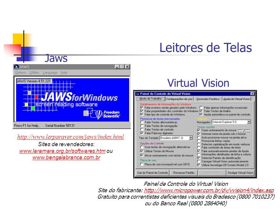 Leitores de Telas Jaws Virtual Vision
