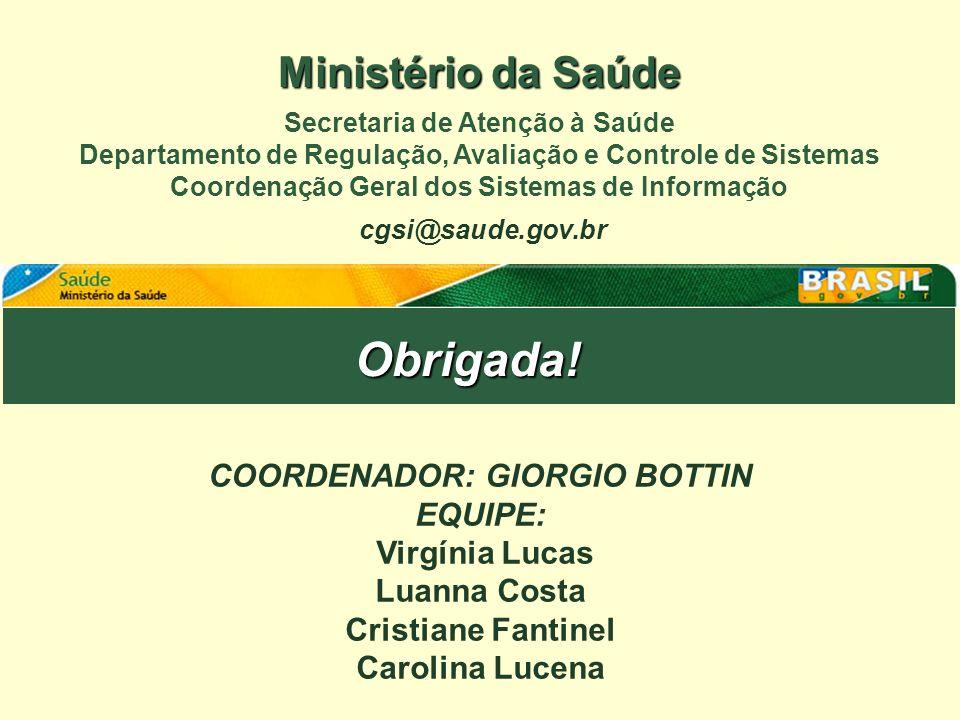 Obrigada! Ministério da Saúde COORDENADOR: GIORGIO BOTTIN EQUIPE: