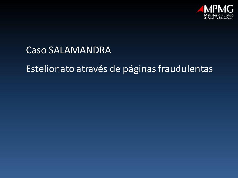 Caso SALAMANDRA Estelionato através de páginas fraudulentas