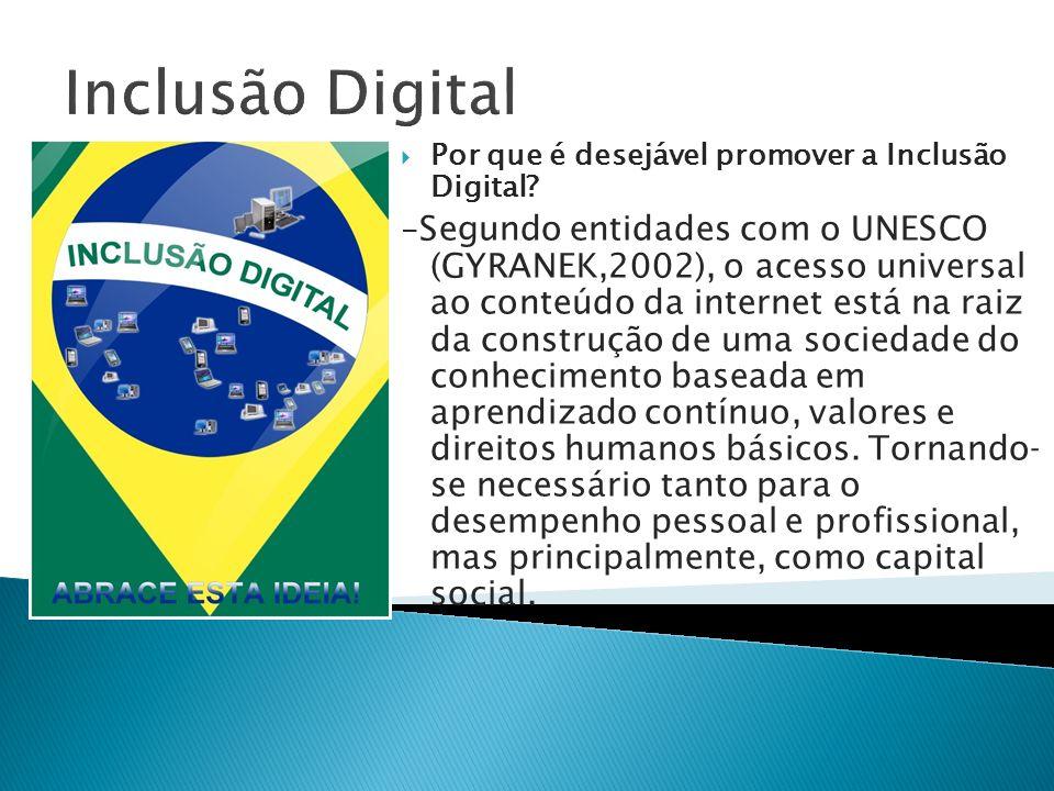 Inclusão Digital Por que é desejável promover a Inclusão Digital
