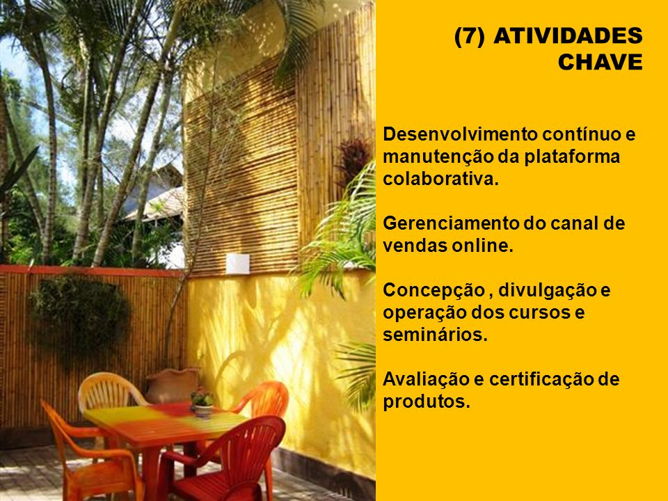 (7) ATIVIDADES CHAVE. Desenvolvimento contínuo e manutenção da plataforma colaborativa. Gerenciamento do canal de vendas online.