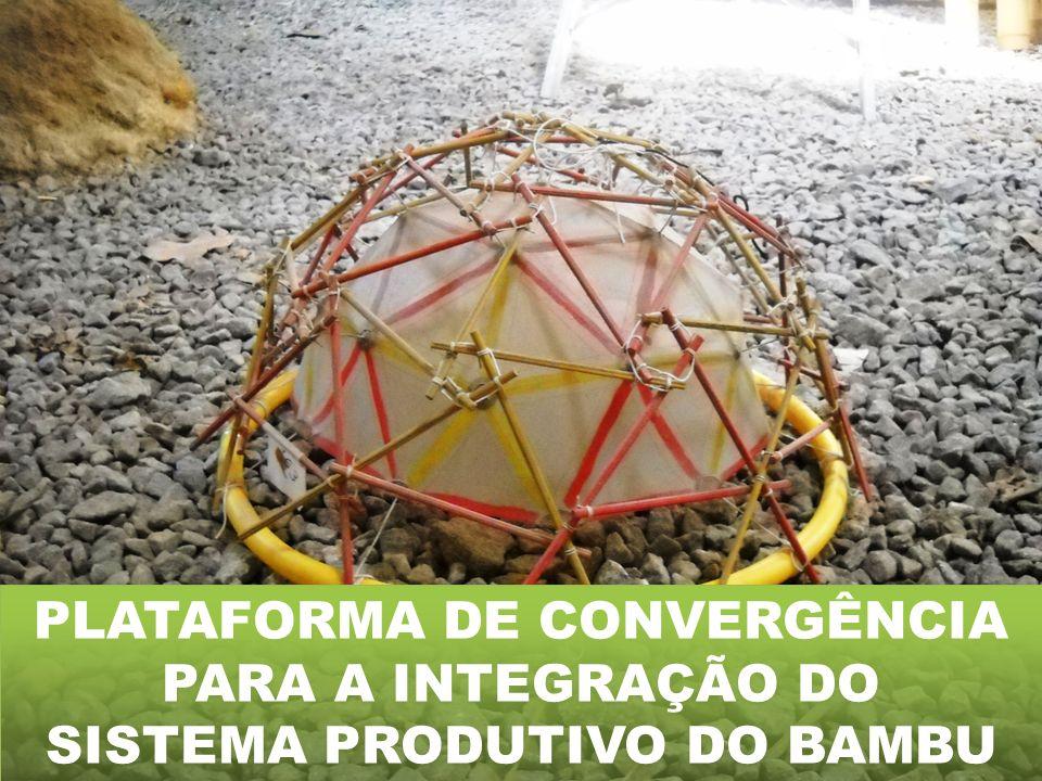 PLATAFORMA DE CONVERGÊNCIA SISTEMA PRODUTIVO DO BAMBU