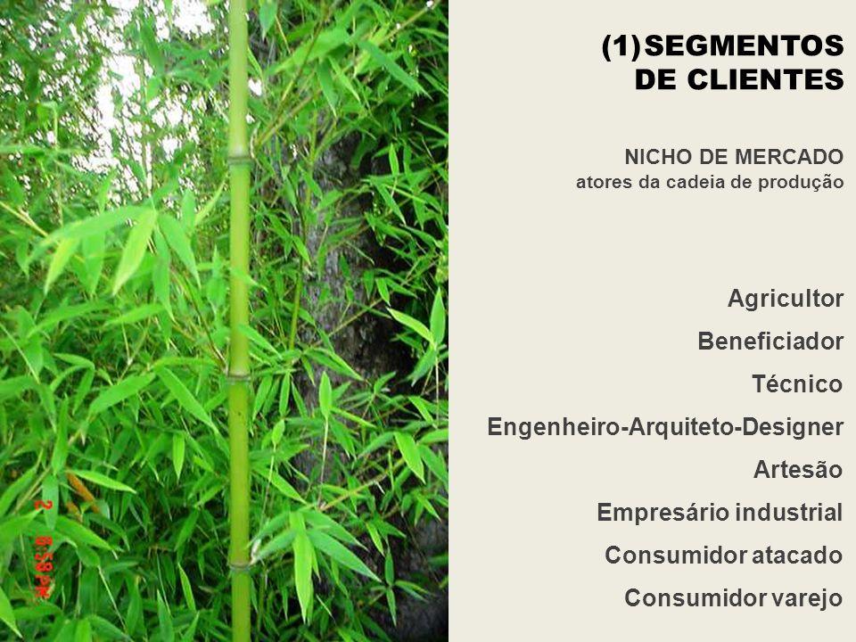 SEGMENTOS DE CLIENTES Agricultor Beneficiador Técnico