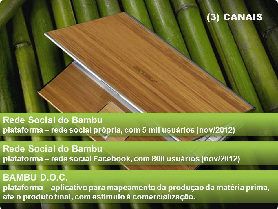 (3) CANAIS Rede Social do Bambu plataforma – rede social própria, com 5 mil usuários (nov/2012)