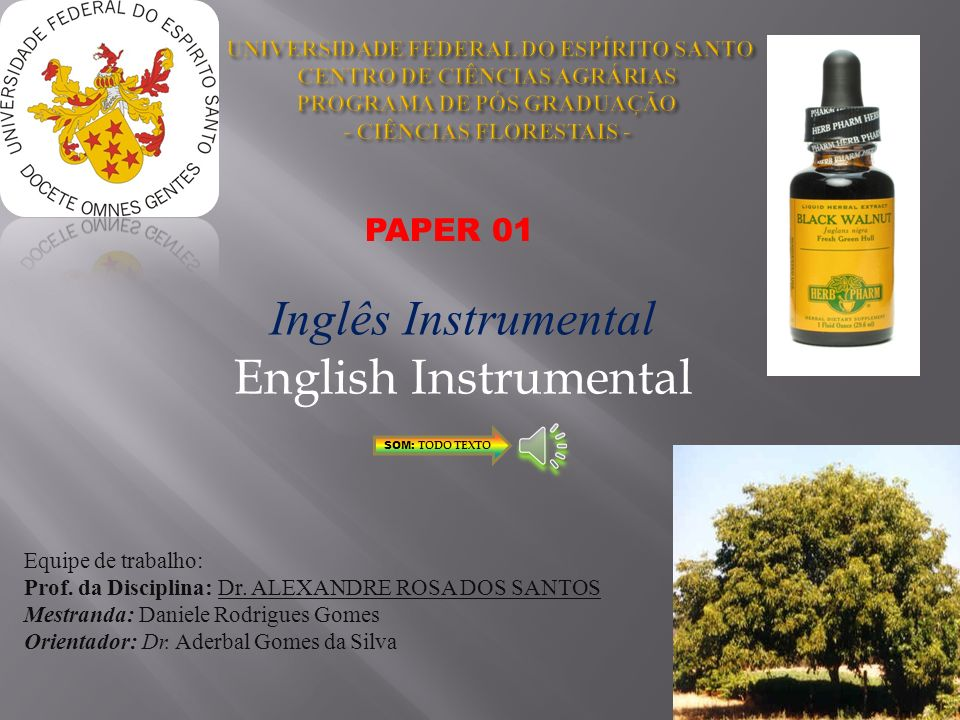 Inglês Instrumental English Instrumental PAPER 01