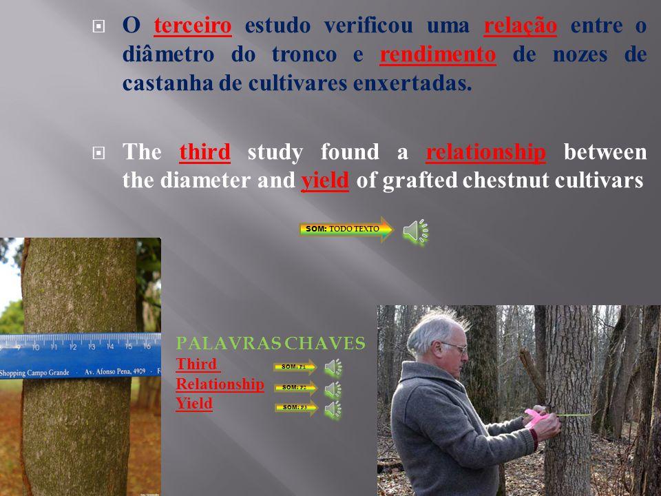 O terceiro estudo verificou uma relação entre o diâmetro do tronco e rendimento de nozes de castanha de cultivares enxertadas.