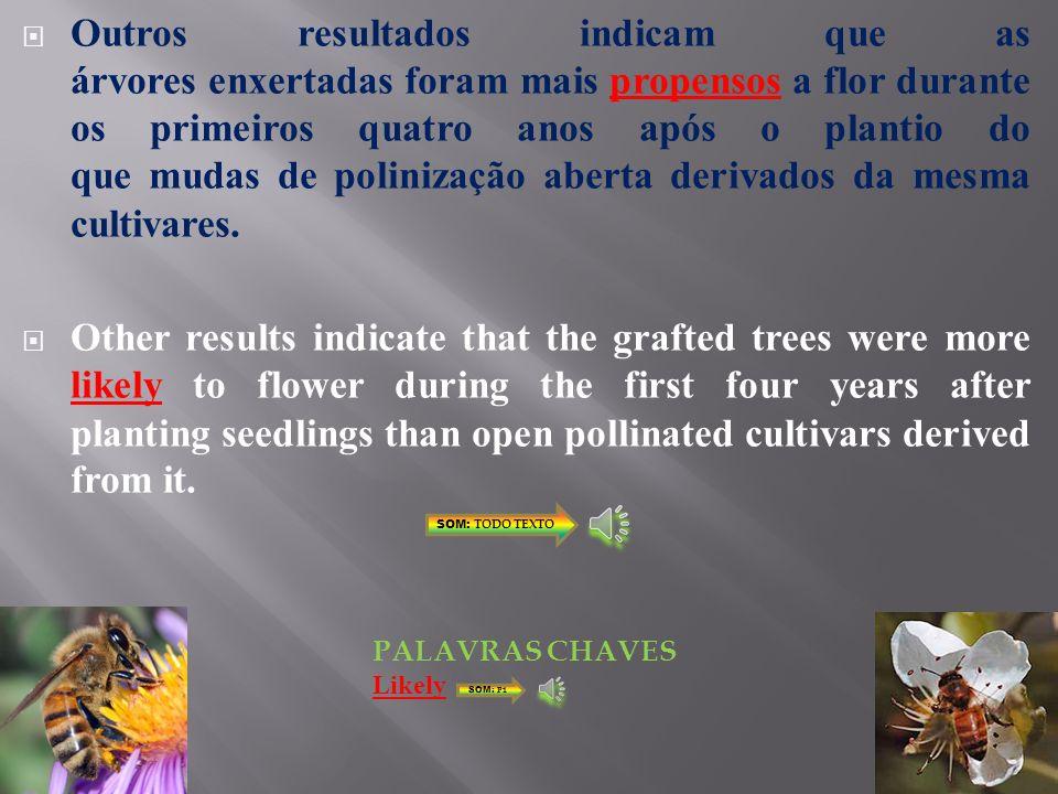 Outros resultados indicam que as árvores enxertadas foram mais propensos a flor durante os primeiros quatro anos após o plantio do que mudas de polinização aberta derivados da mesma cultivares.