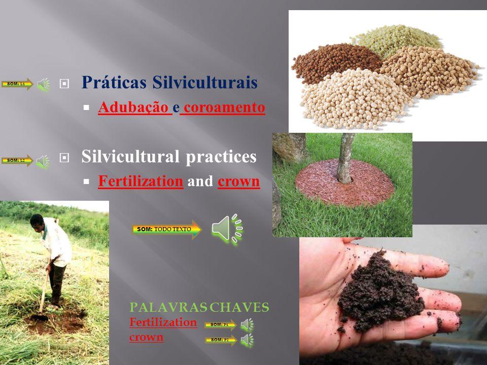 Práticas Silviculturais