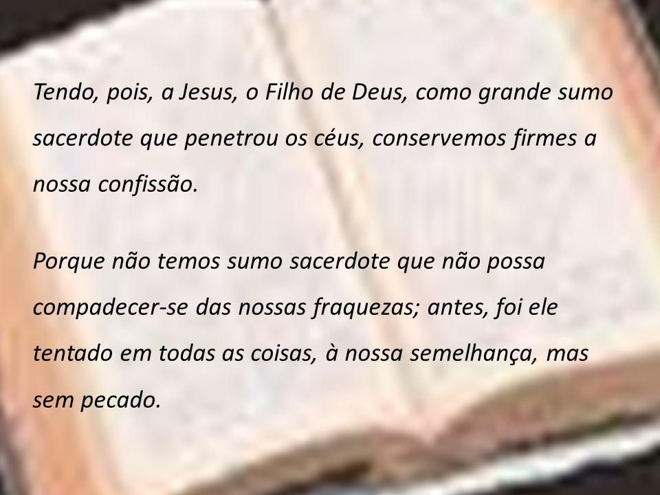 Tendo, pois, a Jesus, o Filho de Deus, como grande sumo sacerdote que penetrou os céus, conservemos firmes a nossa confissão.