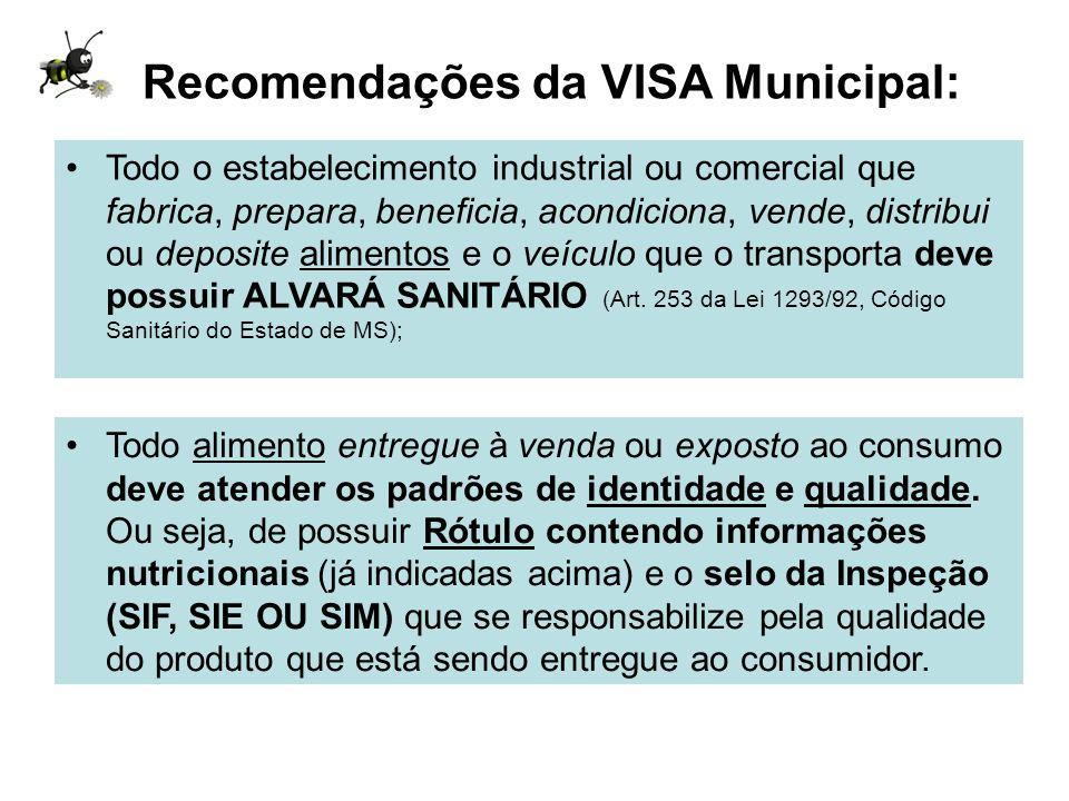 Recomendações da VISA Municipal: