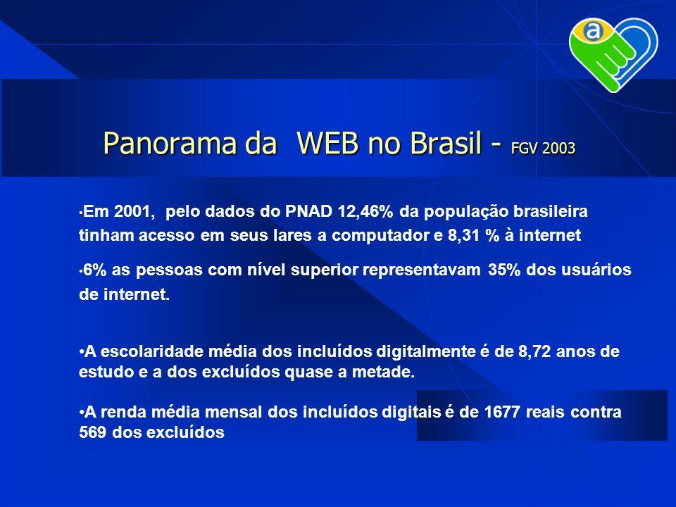 Panorama da WEB no Brasil - FGV 2003