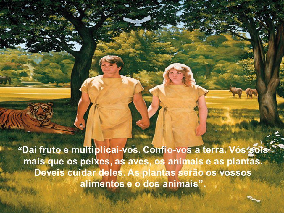 Dai fruto e multiplicai-vos. Confio-vos a terra