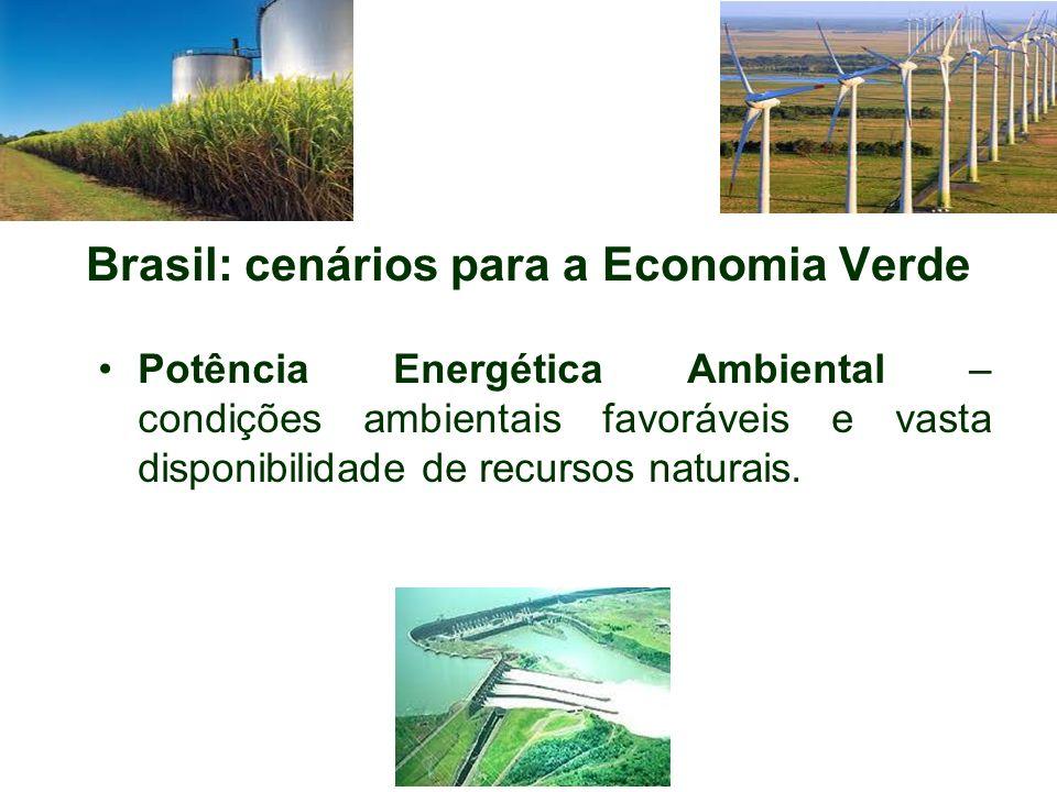 Brasil: cenários para a Economia Verde