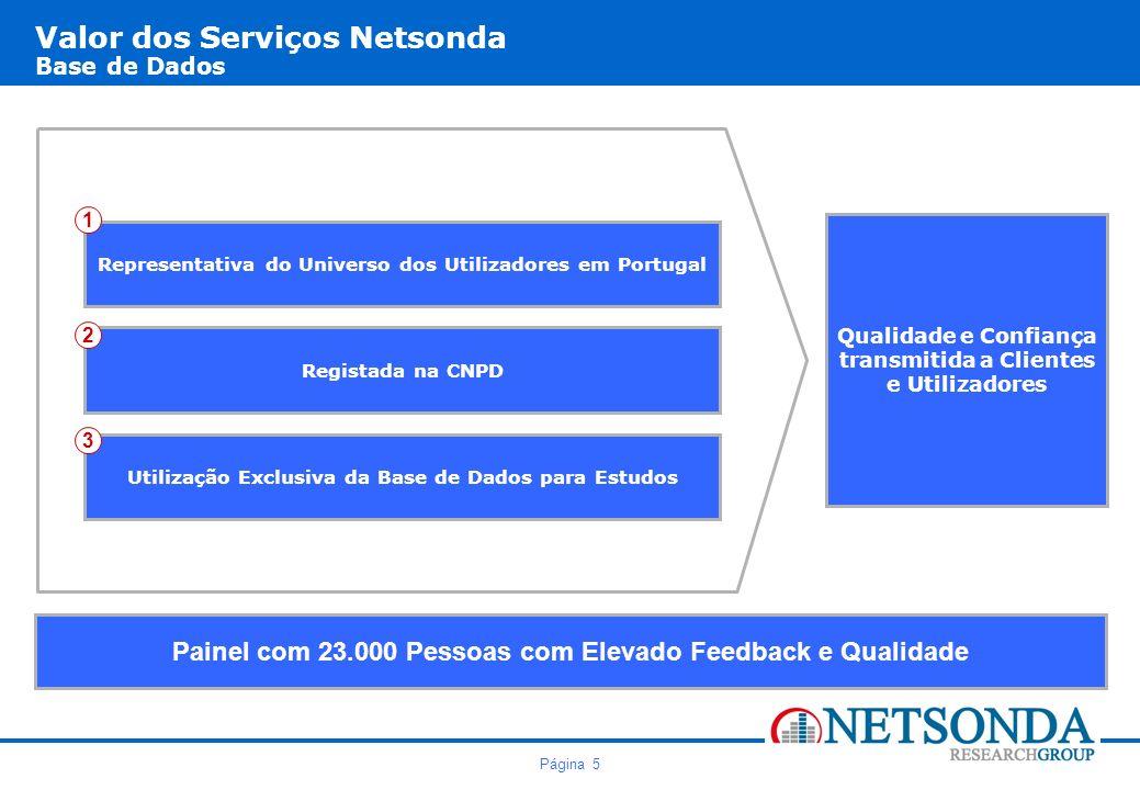Valor dos Serviços Netsonda Base de Dados