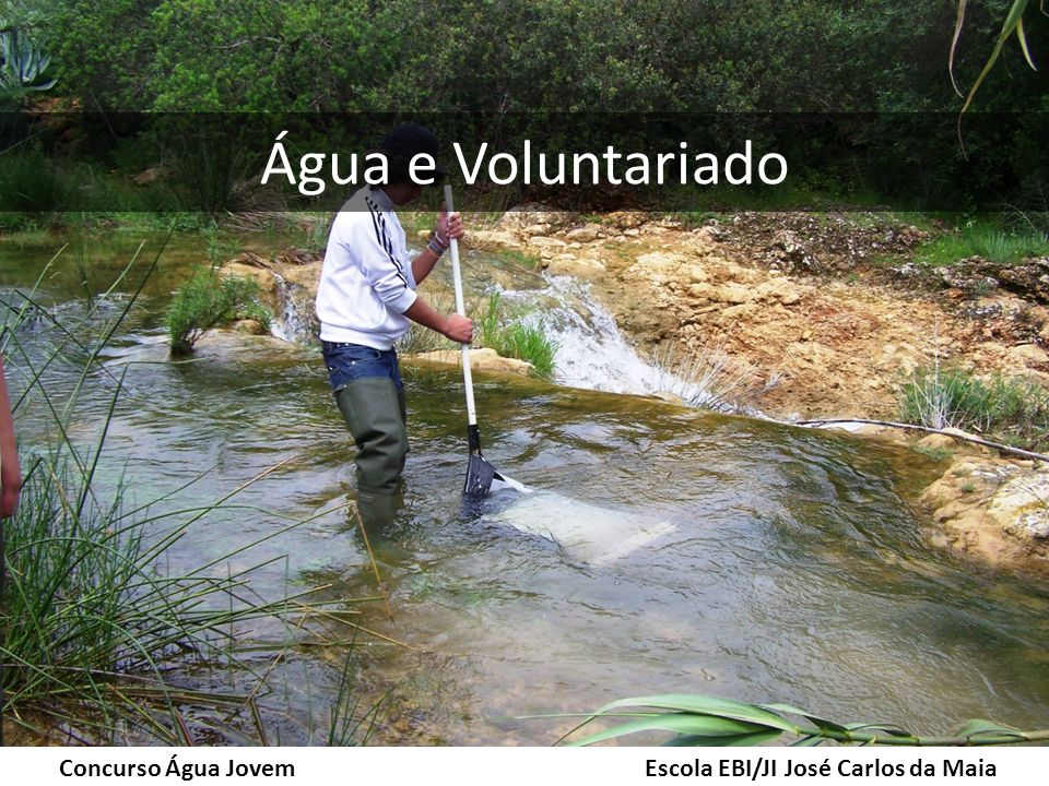 Água e Voluntariado Concurso Água Jovem Escola EBI/JI José Carlos da Maia.