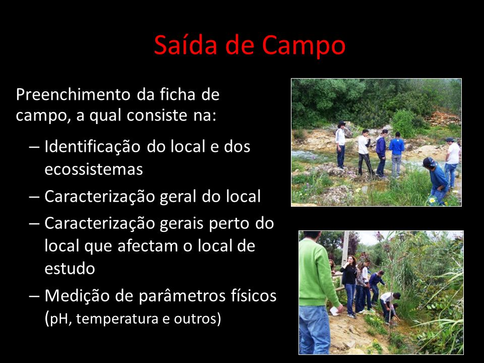 Saída de Campo Preenchimento da ficha de campo, a qual consiste na: