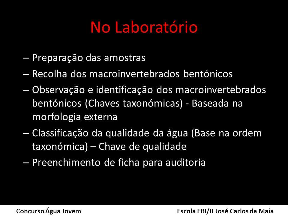 No Laboratório Preparação das amostras