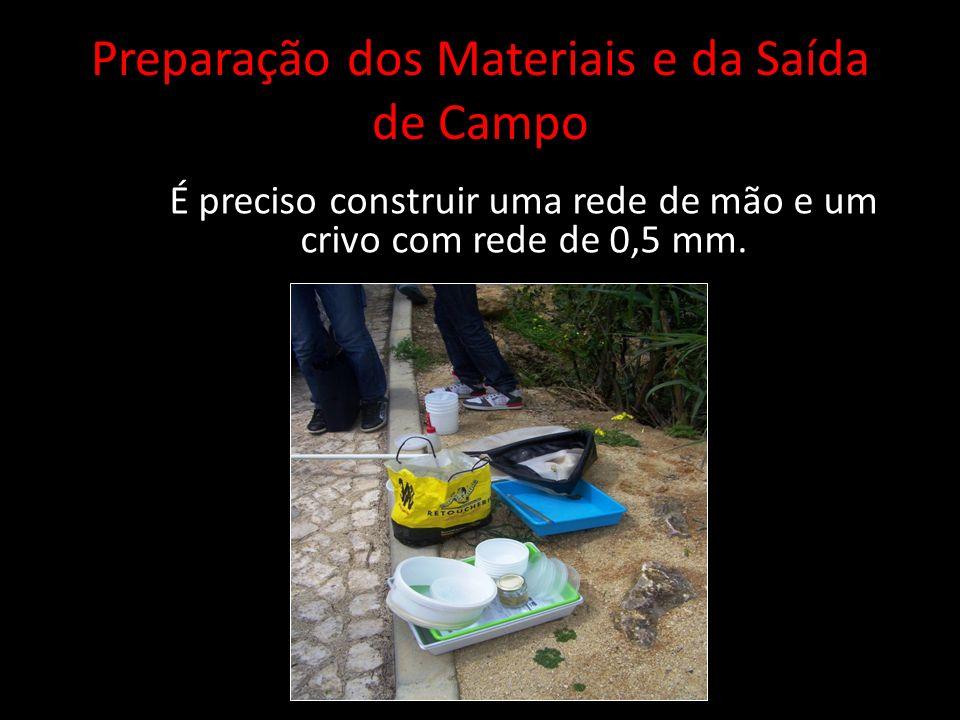 Preparação dos Materiais e da Saída de Campo