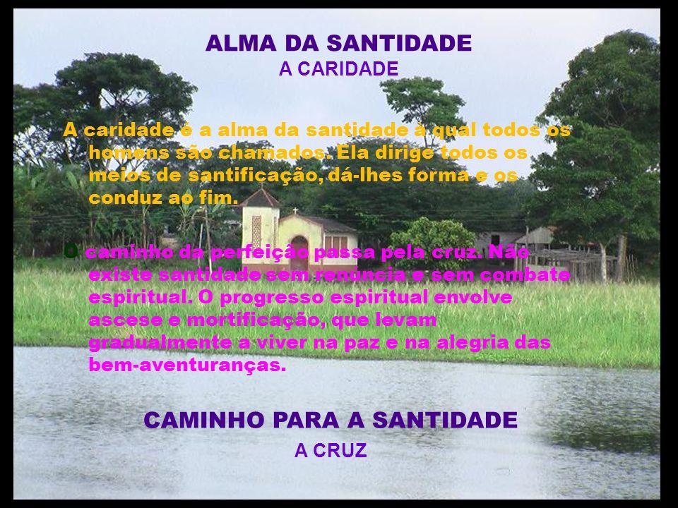 ALMA DA SANTIDADE A CARIDADE