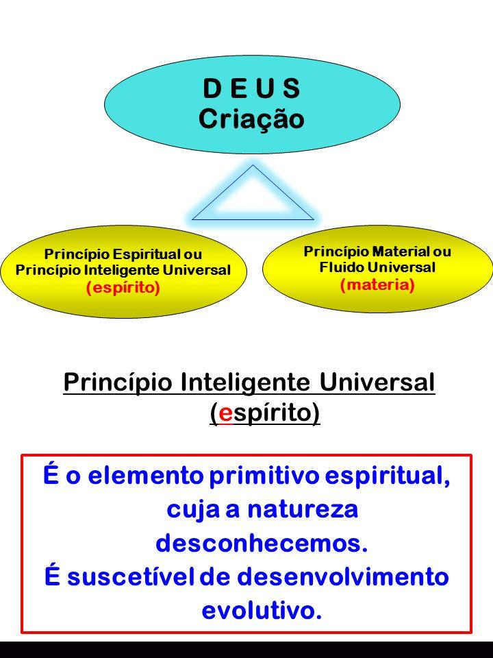 Criação D E U S Princípio Inteligente Universal (espírito)