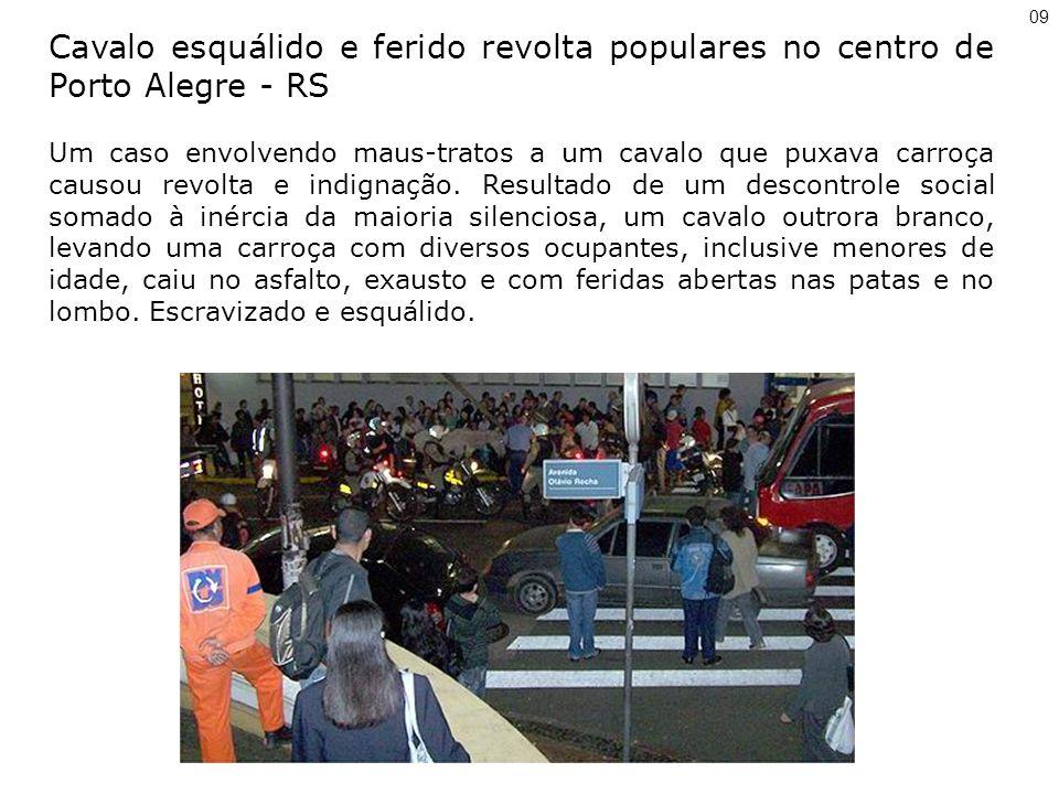 09 Cavalo esquálido e ferido revolta populares no centro de Porto Alegre - RS.