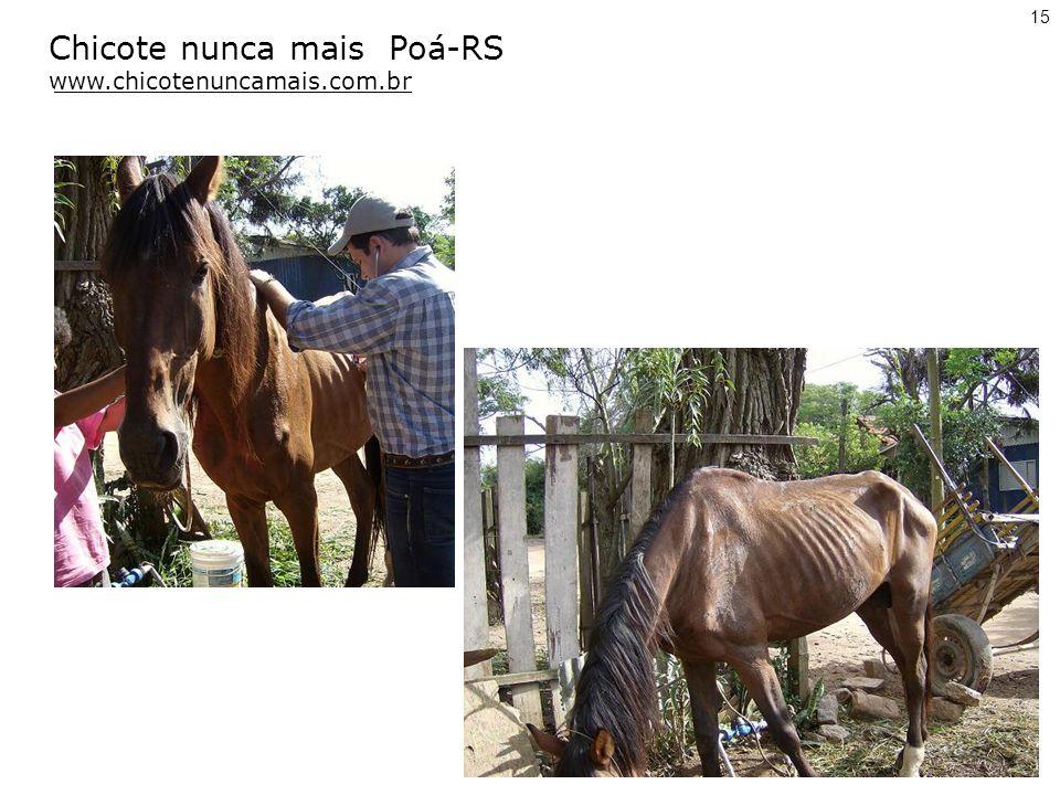 Chicote nunca mais Poá-RS