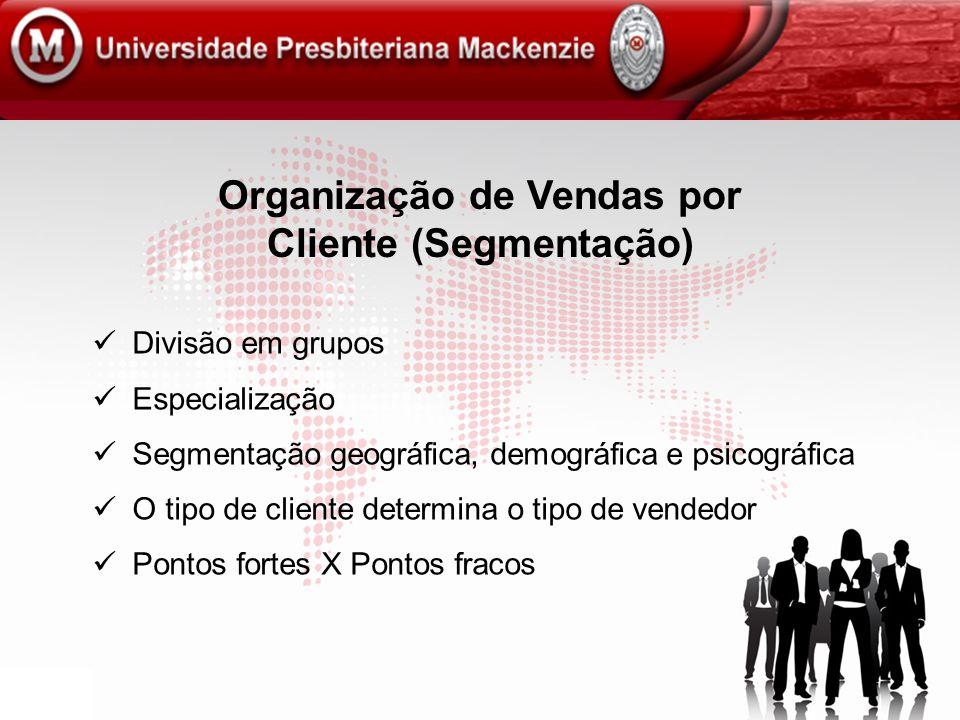 Organização de Vendas por Cliente (Segmentação)
