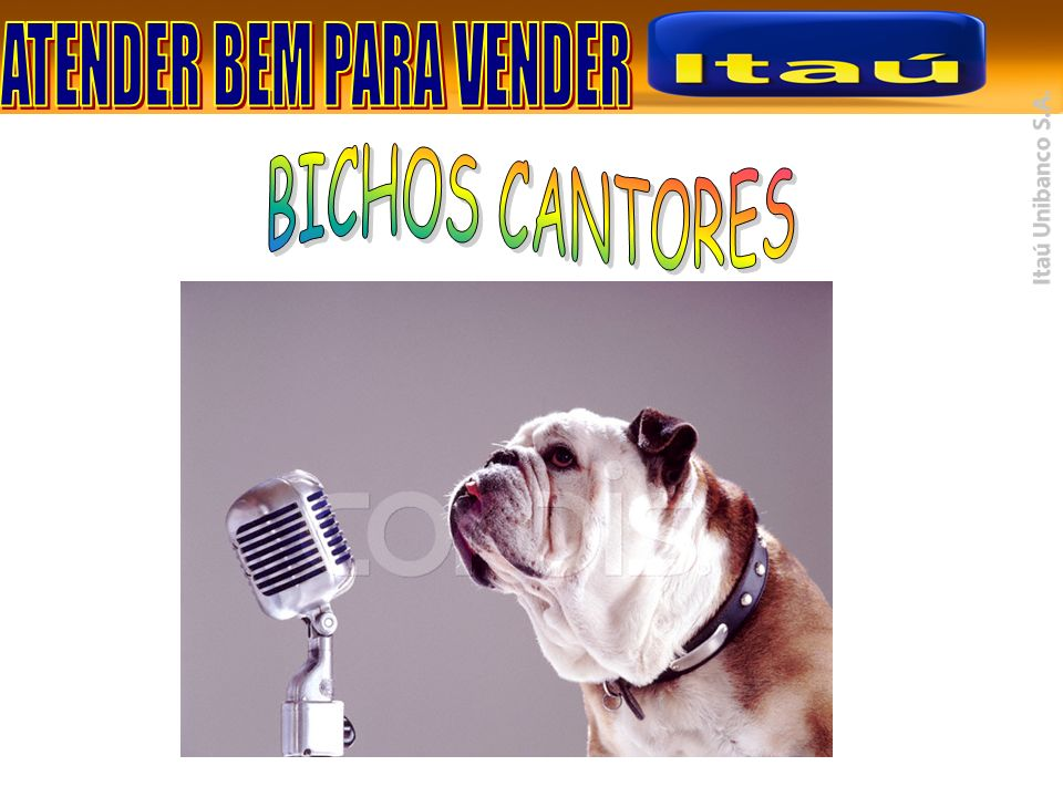 BICHOS CANTORES