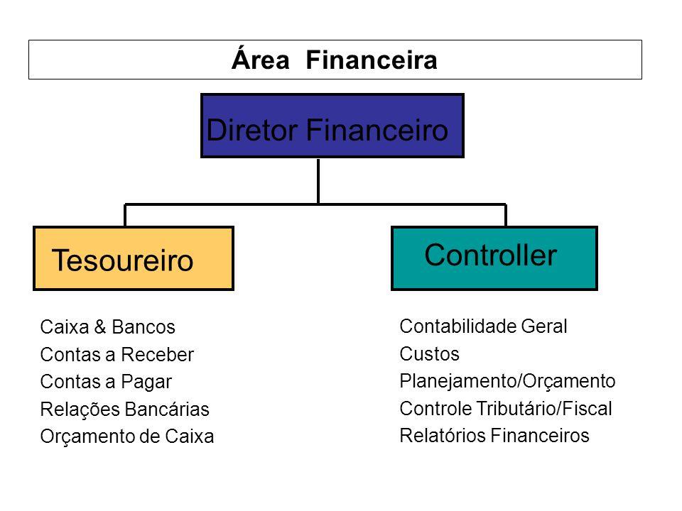 Diretor Financeiro Tesoureiro Controller Área Financeira