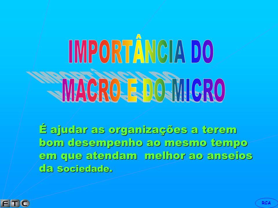 IMPORTÂNCIA DO MACRO E DO MICRO