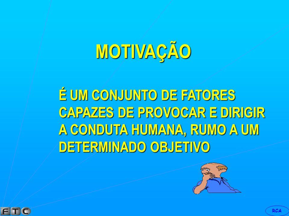 MOTIVAÇÃO É UM CONJUNTO DE FATORES CAPAZES DE PROVOCAR E DIRIGIR