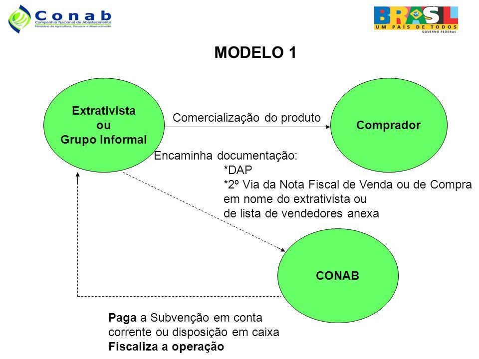 MODELO 1 Extrativista ou Grupo Informal Comprador