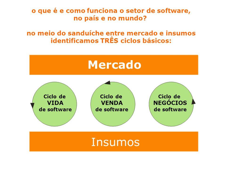 Mercado Insumos o que é e como funciona o setor de software,
