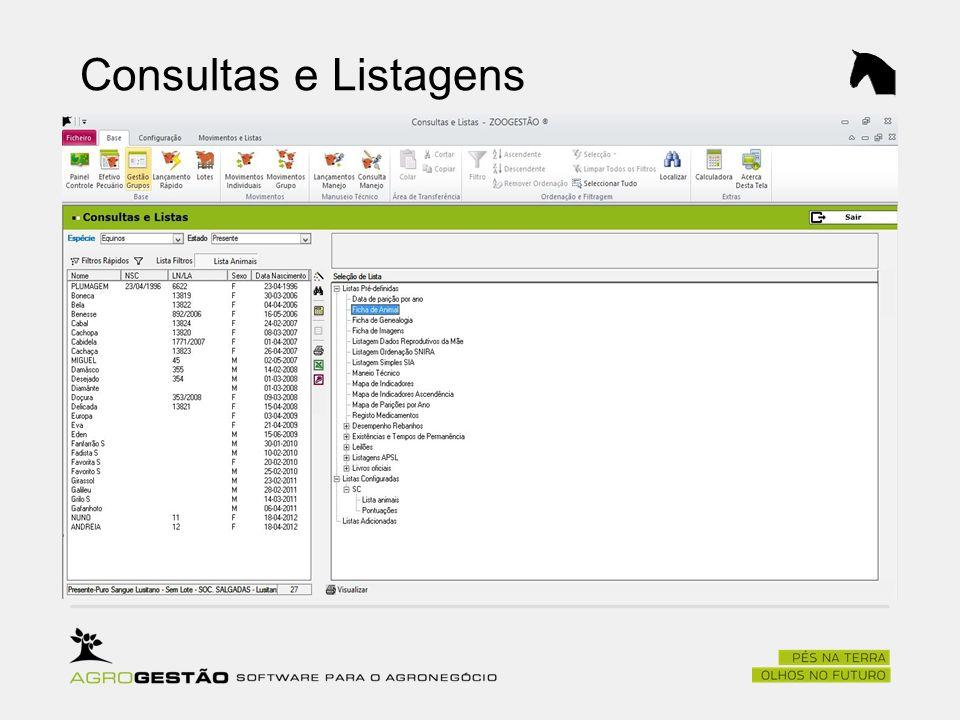 Consultas e Listagens