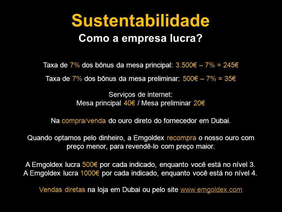 Sustentabilidade Como a empresa lucra