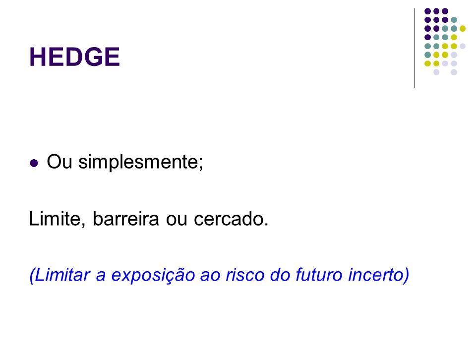 HEDGE Ou simplesmente; Limite, barreira ou cercado.