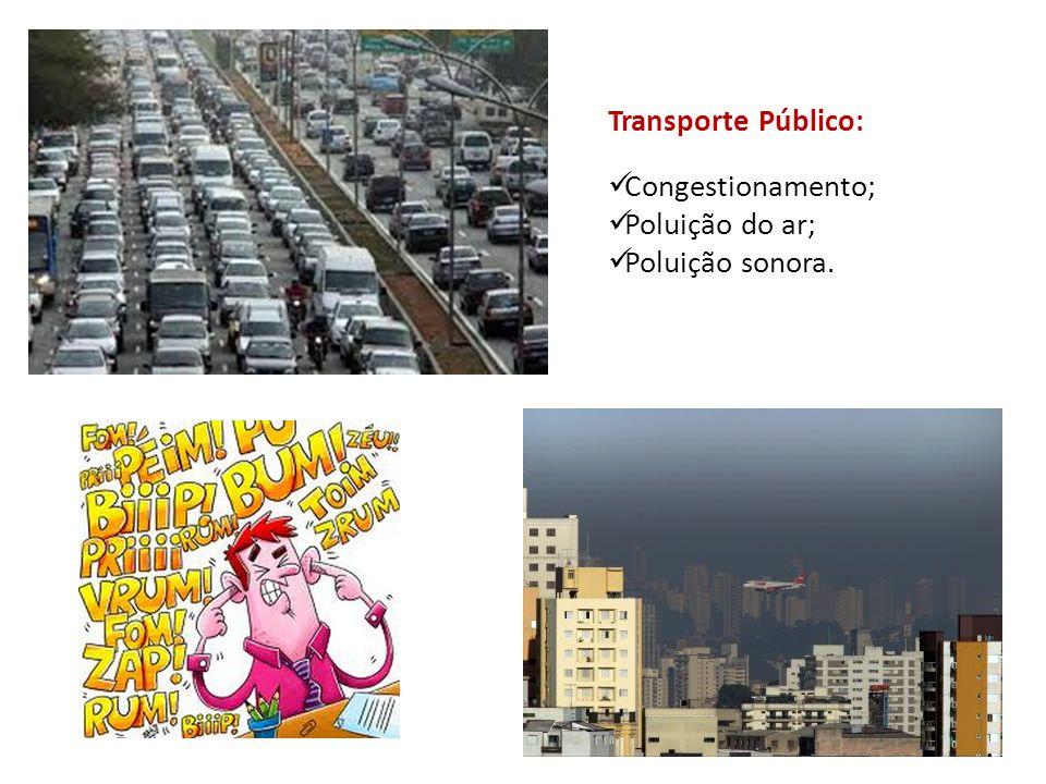 Transporte Público: Congestionamento; Poluição do ar; Poluição sonora.