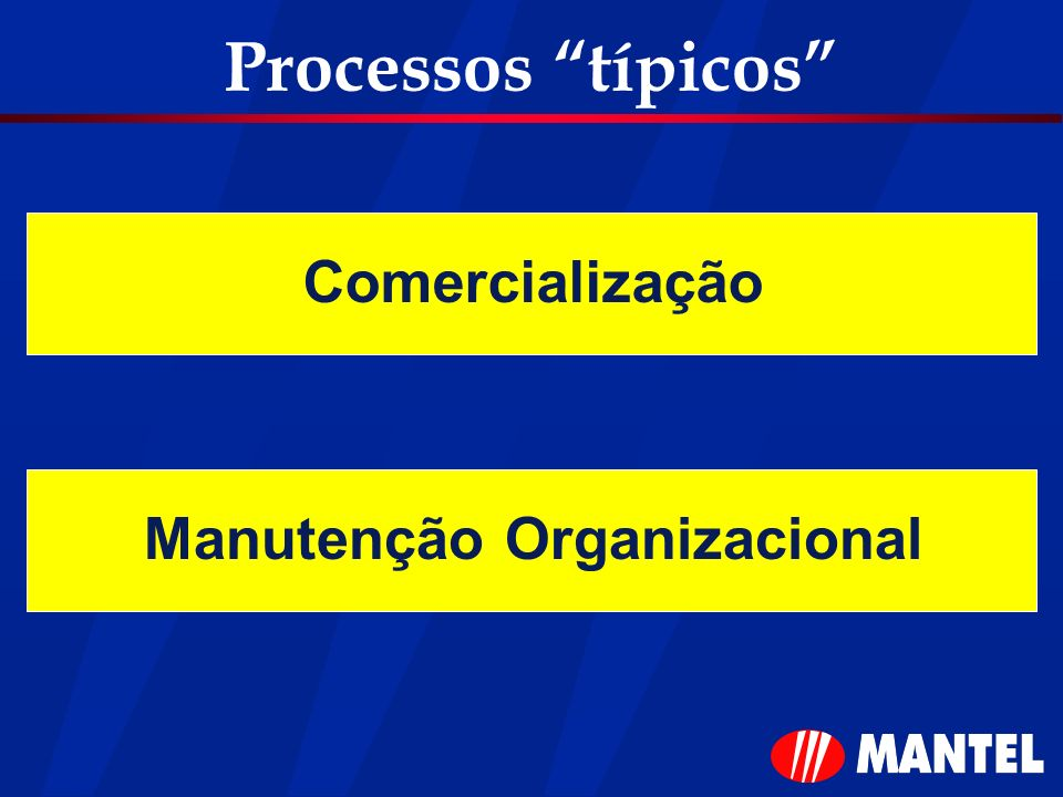 Processos típicos Comercialização Manutenção Organizacional