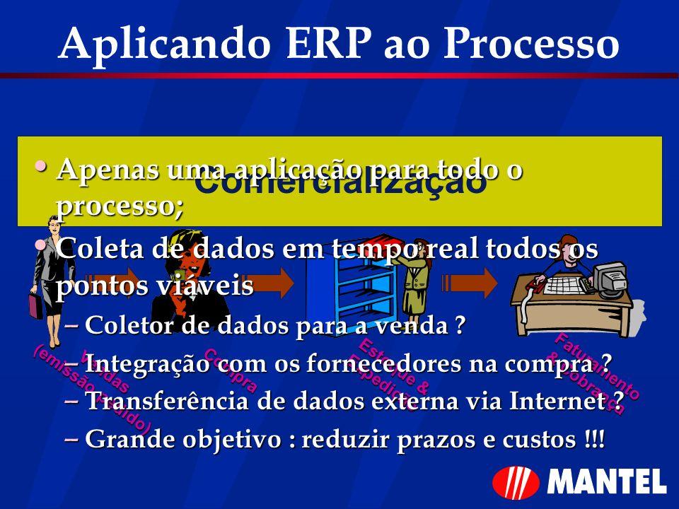Aplicando ERP ao Processo